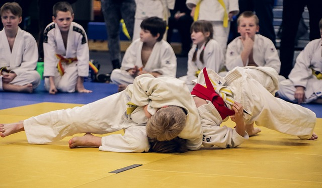 Quelle est l'importance du judo chez les enfants?